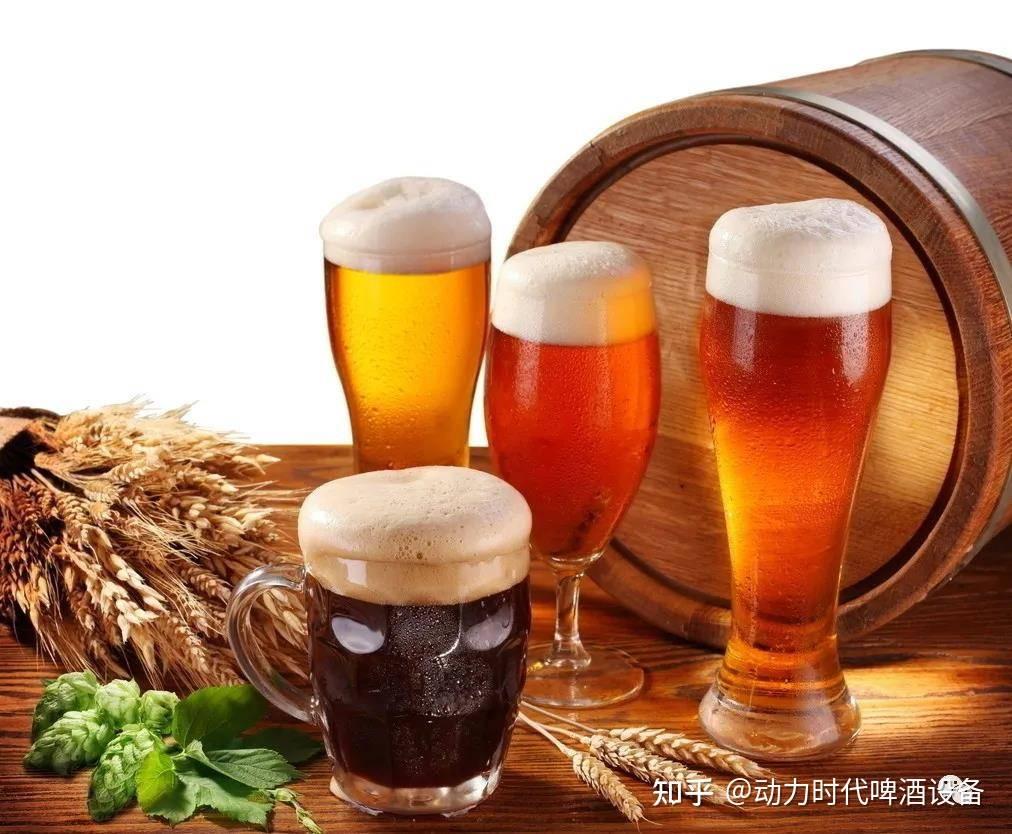 汉庆精酿啤酒设备-一台小型精酿啤酒设备要多少钱?-大麦丫-精酿啤酒连锁超市,工厂店平价酒吧免费加盟