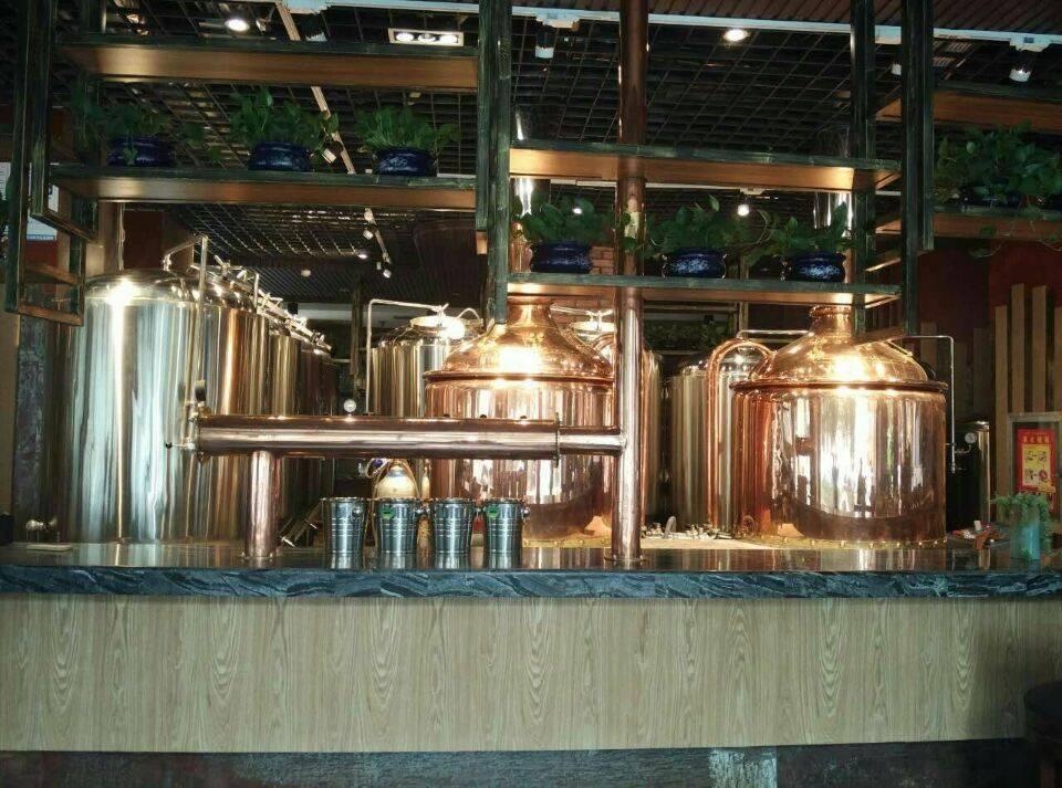 江苏原装进口精酿啤酒设备多少钱-一套精酿啤酒设备多少钱一套自制啤酒设备-大麦丫-精酿啤酒连锁超市,工厂店平价酒吧免费加盟
